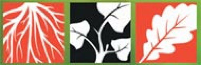 Roots Shoots Leaves Ltd